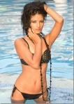 Poonam Pandey Hot Photos Free Download HD18