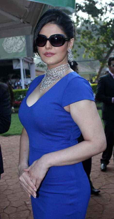 Zarine Khan Hot Photos Free Download 2013  5Abi Songs -5416